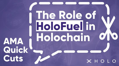 The Role of HoloFuel